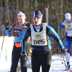 Skiing 90 km - André Isaksson (11495)