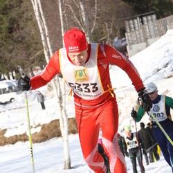 Skiing 90 km - Detlef Scholle (5333)