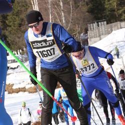 Skiing 90 km - Avo Raud (11607)