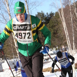 Skiing 90 km - Henrik Svaland Aas (4972)