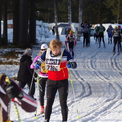 Skiing 90 km - Anders Andersson (7186)