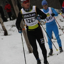 Skiing 90 km - Brice Viard-Gaudin (1267)