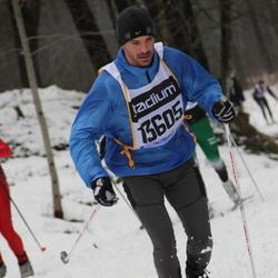 Skiing 90 km - Björn Ahlepil (13605)