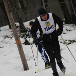 Skiing 90 km - Jan-Erik Solheim (1141)