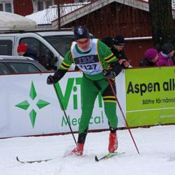 Skiing 90 km - Einar Raknes Brekke (1127)