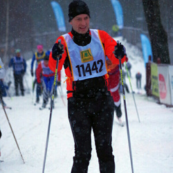Skiing 90 km - Christer Johannesson (11442)